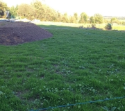 The-new-lawn-well-up-on-19-Oct-2014.